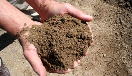 Grade 1 Topsoil